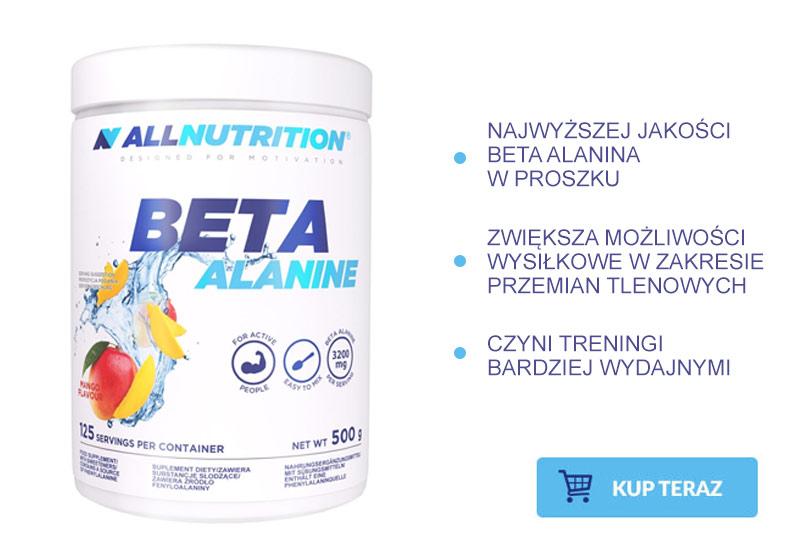 beta alanina działanie
